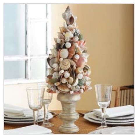 shells trees and coastal decor on pinterest