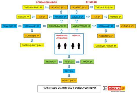 cuarto grado de consanguinidad y segundo de afinidad sab 237 as que