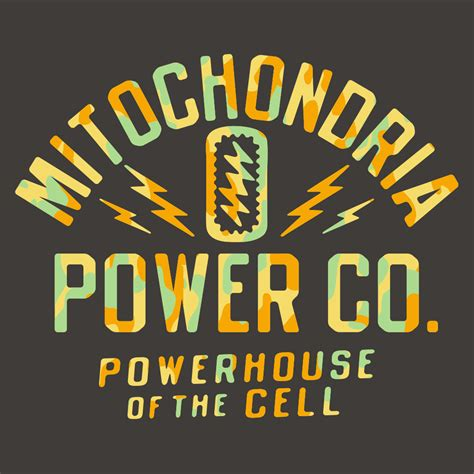 Of The by Mitochondria Powerhouse Of The Cell T Shirt Snorgtees