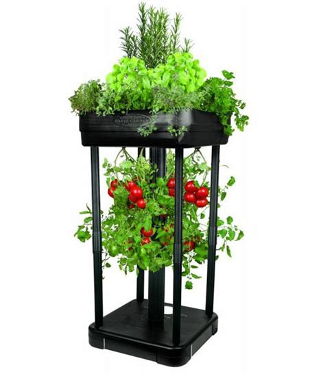 Tomato Patio Planter by Tomato Planter And Patio Garden System