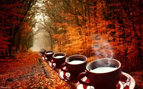 coffee autumn wallpaper autumnal train with coffee photography abstract