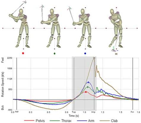 biomechanics of golf swing basic biomechanics
