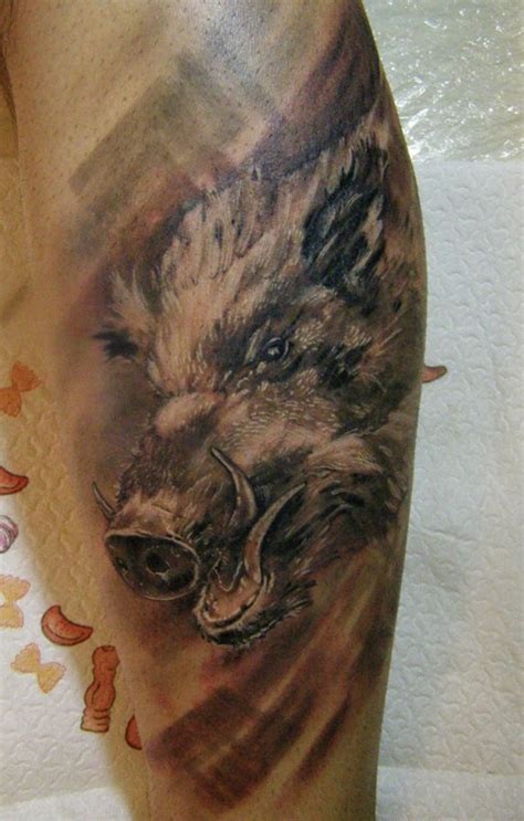 boar tattoo images amp designs