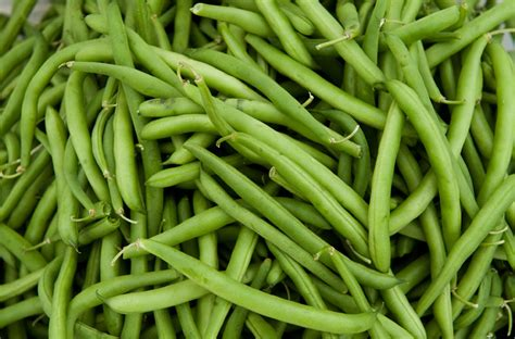 The Cost Of Beans by 8 Most Cost Effective Vegetables To Grow