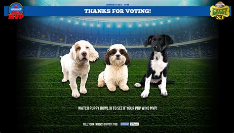 puppy bowl mvp puppies fuzzy today