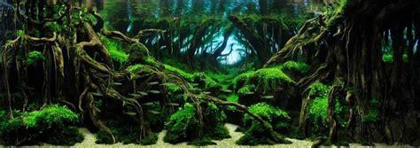 japanese aquascape artist the majestic aquariums of the tokyo aquascape union spoon tamago