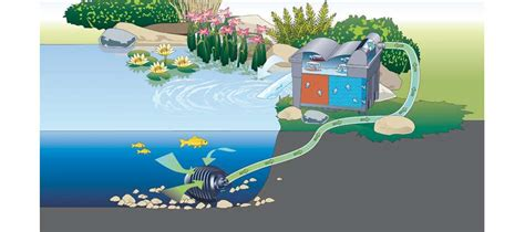 Pompa Aquarium Hai filtre bassin oase biosmart set 14000 animabassin