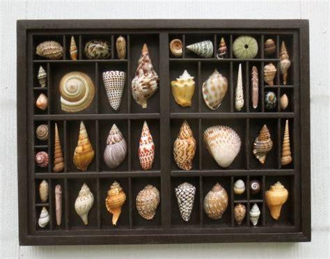 220 ber 1 000 ideen zu muschelkunst auf basteln - Muschel Badezimmerdekor