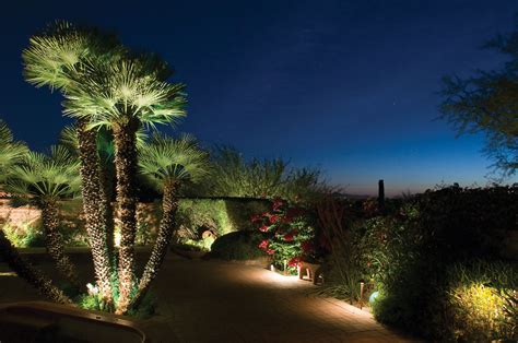Outdoor Palm Tree Lights Garden Lighting Wilmington Nc