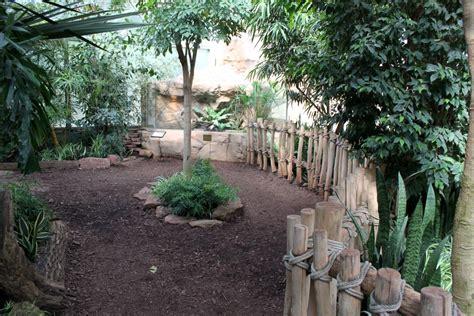 rhino house magdeburg zoo africambo rhino house 187 zoologischer garten magdeburg gallery