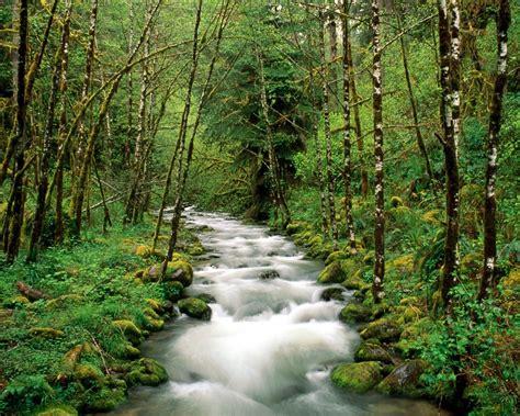 imagenes bidimensionales naturales 40 buenas imagenes de paisajes naturales entren taringa