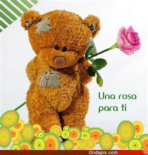 imagenes estas flores son para ti una rosa para ti tarjetitas ondapix tarjetitas ondapix