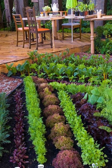 Beautiful Vegetable Garden Backyard Deck And Patio Porch Vegetable Garden