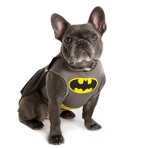 DC Comics? Batman Pet Costume   dog Costumes   PetSmart