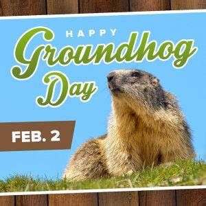 groundhog day origin devoe cadillac naples florida