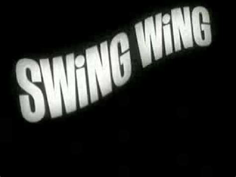 swing wing retro commercial toys swing wing