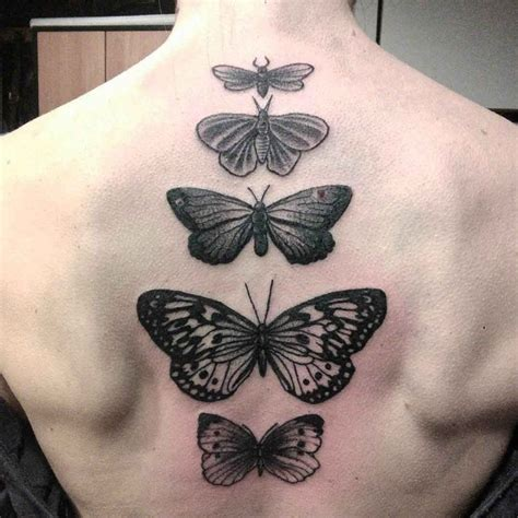 tattoos down the spine designs butterfly spine best ideas gallery