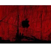Red HD Wallpaper  Apple