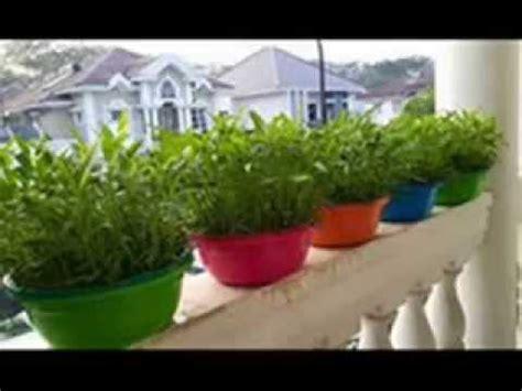 youtube membuat tanaman hidroponik cara mudah menanam sayur sistem hidroponik sederhana di