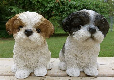black and brown shih tzu 2 shih tzu puppies figurines 7 in black and brown white