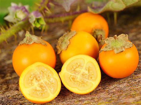 Vegetable Garden Plants by Naranjilla Seeds Baker Creek Heirloom Seeds