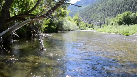 fly fishing colorado s south fly fishing the white river colorado info