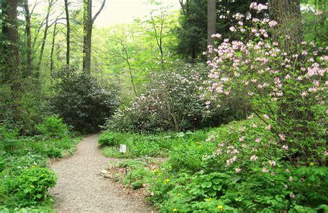 in the gardens garden in the woods