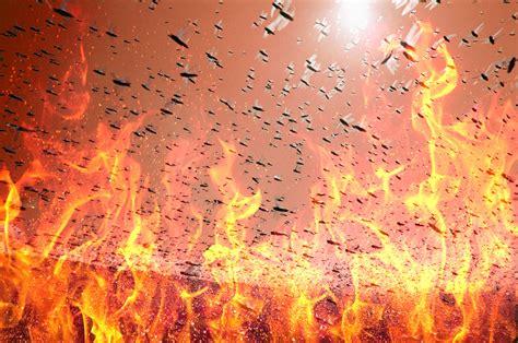 lucertola volante lucertole volanti 28 images rettili volanti allzoon