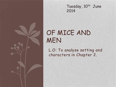 Of Mice And Section 2 omam section 2 of mice and