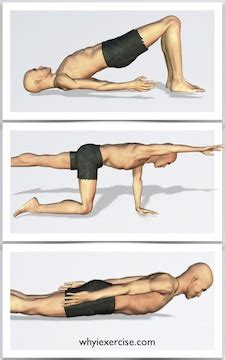 back strengthening exercises illustrated with lifelike figures