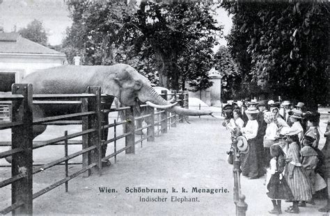The Modern Traveler 1898 the world s oldest zoo is a modern attraction with a