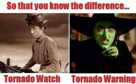 Wizard Of Oz Meme - 17 best images about wizard of oz on pinterest margaret