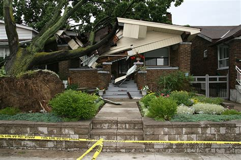 tree falls on house tree falls on house 3 flickr photo sharing
