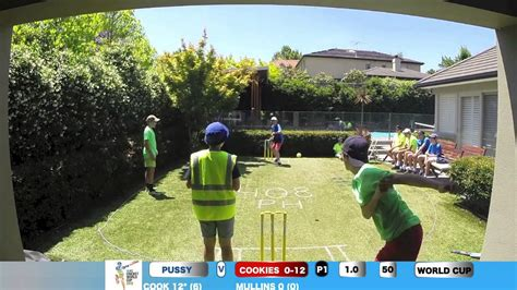 backyard cricket game backyard cricket world cup game 4 youtube
