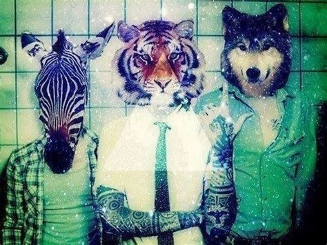 imagenes hipster animales hipster ways tumblr