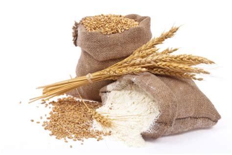 alimenti senza frumento cereali la forzadellanatura s pagina 4