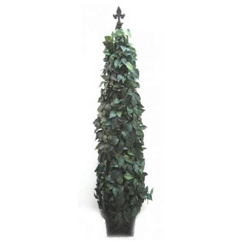 pyramid topiary tree plant hire christchurch marquee and hire