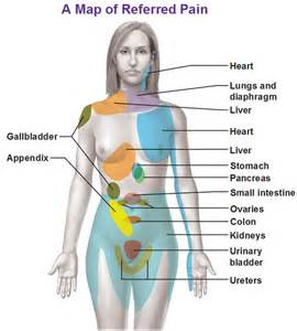 Gallbladder referred pain locations