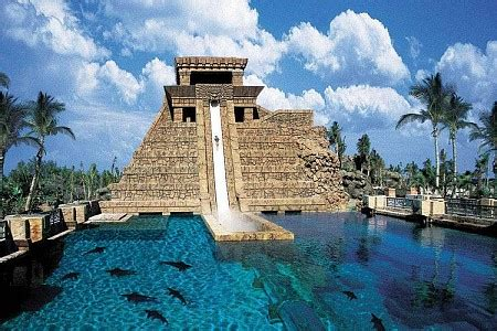 top 5 water parks: from dubai's shark infested aquaventure