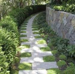 garden paths lost in the flowers