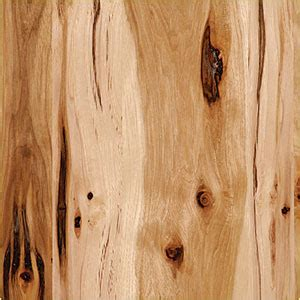 Knotty Alder Kitchen Cabinets by Wood Species