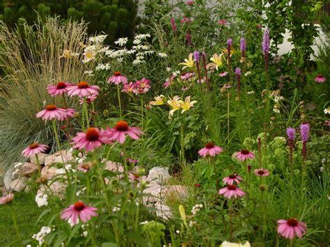 reader photos leslie s garden in colorado springs