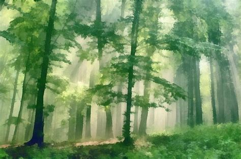 forest  odon czintos forest painting forest art