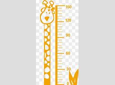 Measure Height PNG Images | Vectors and PSD Files | Free ... Free Baby Related Clipart