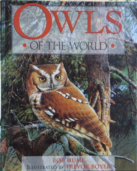 owl picture books 1000 images about book s i d like on birds
