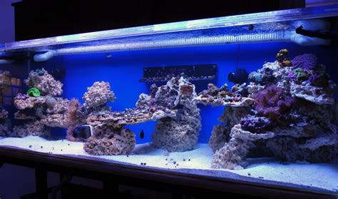 Saltwater Aquarium Aquascape by How To Drill Live Rock Reef Central Community