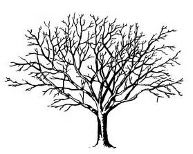 Clip Tree Outline by Tree Outline Clip Clipart Best