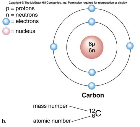 how many protons in sulfur how many protons and neutrons does potassium 28 images