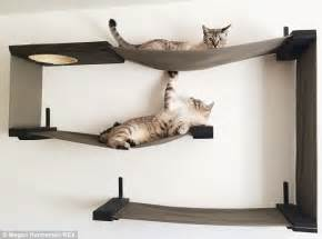 cat wall furniture cat mad couple construct furniture for pets and sell them