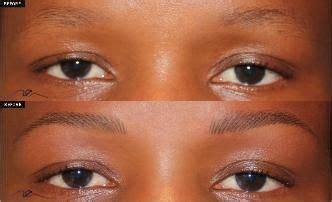 tattoo eyebrows nashville tn 58 best eyebrows gallery images on pinterest